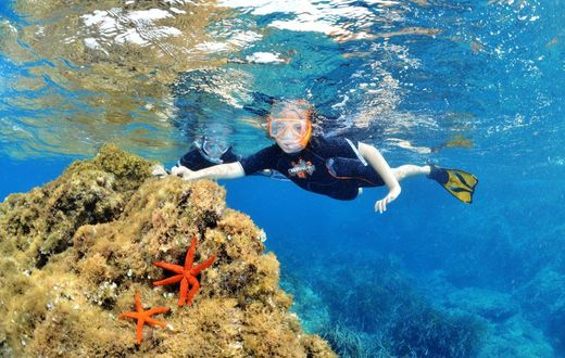 snorkelling-hyeres-sous-marin